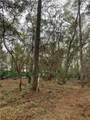 190 Bluebill Trail - Photo 3
