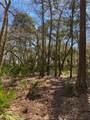190 Bluebill Trail - Photo 5