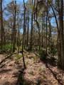 190 Bluebill Trail - Photo 6