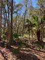 190 Bluebill Trail - Photo 7