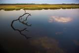 596 Salt Creek Way - Photo 14