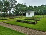 55 Palmetto Plantation Drive - Photo 22
