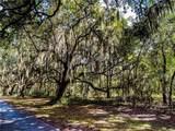 115 Laurel View Drive - Photo 4