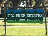 1134 Big Pine Street - Photo 32