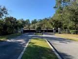 105 Great Egret Lane - Photo 1