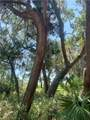 Lot 25 Guale Point - Photo 21