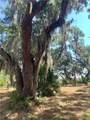 Lot 25 Guale Point - Photo 9