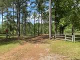 295 Barbara Branch Road - Photo 29