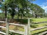 295 Barbara Branch Road - Photo 31