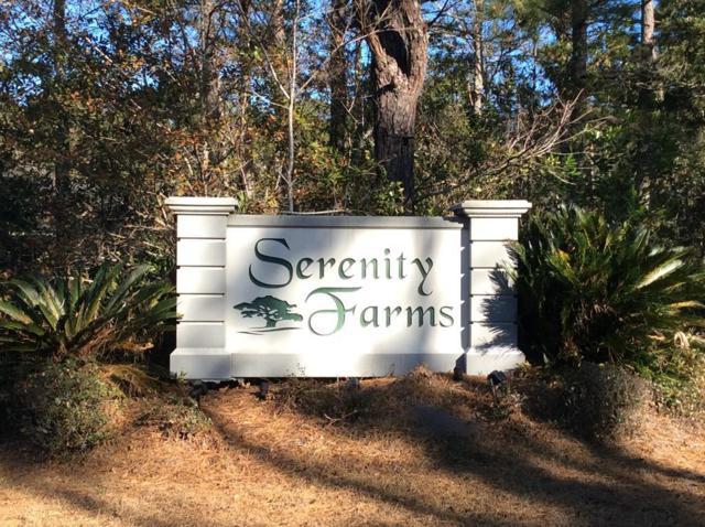 Serenity Farms Road, Woodbine, GA 31569 (MLS #1587853) :: Coastal Georgia Living