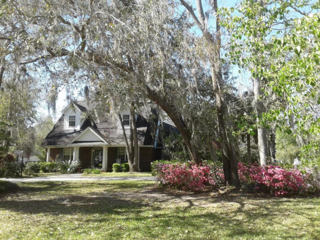 159 Royal Drive, Brunswick, GA 31523 (MLS #1588100) :: Coastal Georgia Living
