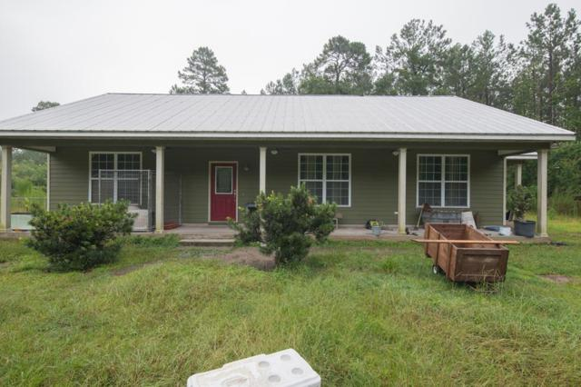 31 Hippard Clinch Lane, Brunswick, GA 31523 (MLS #1589771) :: Coastal Georgia Living