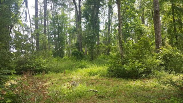 13 Black Island Road, Darien, GA 31305 (MLS #1589779) :: Coastal Georgia Living