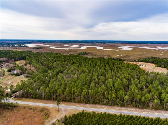 0 Harris Neck Road, Townsend, GA 31331 (MLS #1606511) :: Coastal Georgia Living