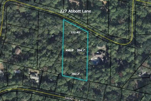 227 Abbott Lane, St. Simons Island, GA 31522 (MLS #1608282) :: Coastal Georgia Living