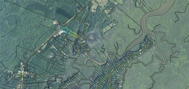 3 E/S Ga. Hwy. 99 Highway, Darien, GA 31305 (MLS #1609913) :: Coastal Georgia Living