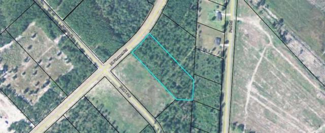 185 Mt Pleasant Road, Hortense, GA 31543 (MLS #1609993) :: Coastal Georgia Living