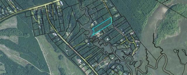 1276 Doodle Hill Road Road NE, Shellman Bluff, GA 31331 (MLS #1610285) :: Coastal Georgia Living