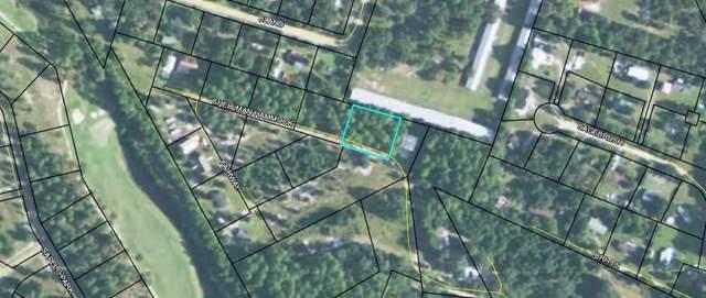 1 Shellman Hammock Drive, Shellman Bluff, GA 31331 (MLS #1612421) :: Coastal Georgia Living