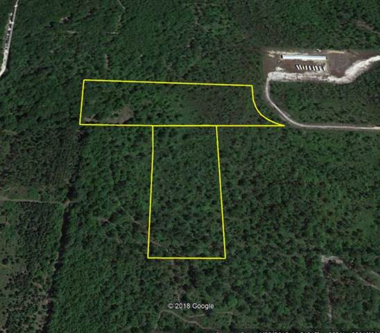 0 North Manor Millwood Road, Other, GA 31552 (MLS #1612423) :: Palmetto Realty Group