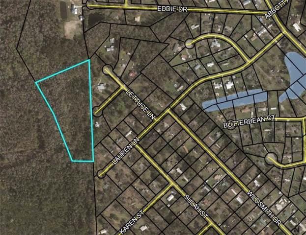 345 Cabbage Lane, Brunswick, GA 31525 (MLS #1612480) :: Coastal Georgia Living