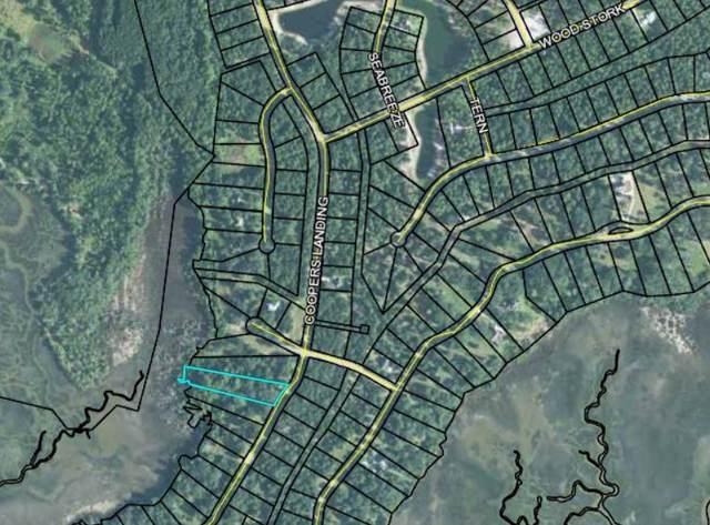 240 Cooper's Point Drive, Townsend, GA 31331 (MLS #1614524) :: Coastal Georgia Living