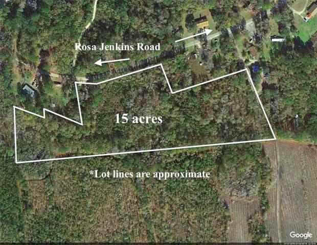 15 Rosa Jenkins Road, Townsend, GA 31331 (MLS #1614609) :: Coastal Georgia Living