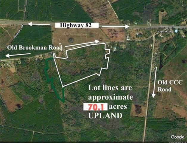 70 Old Brookman Road, Brunswick, GA 31523 (MLS #1614610) :: Coastal Georgia Living