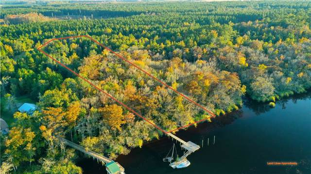 4 Settlers Bluff Road, Folkston, GA 31537 (MLS #1614766) :: Palmetto Realty Group