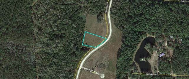 Lot 3 Hillcrest Drive, Darien, GA 31305 (MLS #1617453) :: Coastal Georgia Living