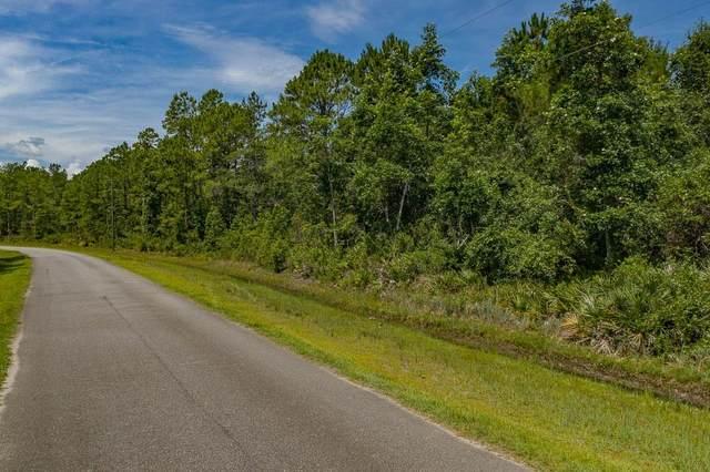 23 Spring Branch Road, Brunswick, GA 31523 (MLS #1618969) :: Coastal Georgia Living