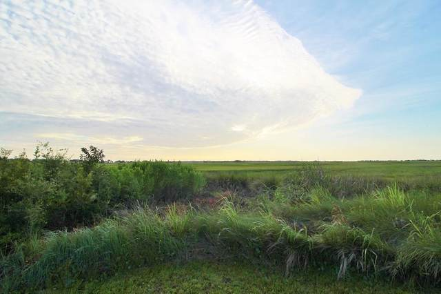42 Frederica Oaks Lane, St. Simons Island, GA 31522 (MLS #1618977) :: Coastal Georgia Living