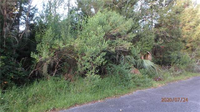 805 Patricia Ave, St Marys, GA 31558 (MLS #1620341) :: Coastal Georgia Living