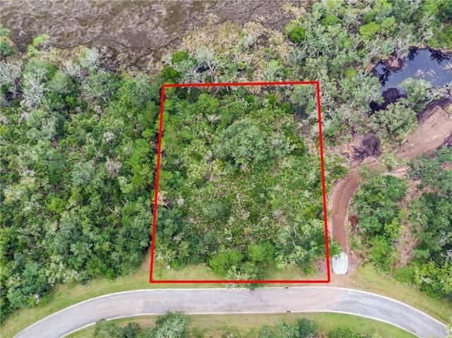 43 Dorsey Circle, St. Simons Island, GA 31522 (MLS #1622912) :: Coastal Georgia Living