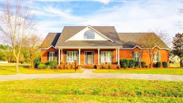 6119 Stoney Brook Drive, Blackshear, GA 31516 (MLS #1624091) :: Coastal Georgia Living
