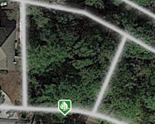 130 Palmera Lane, Brunswick, GA 31525 (MLS #1624284) :: Coastal Georgia Living