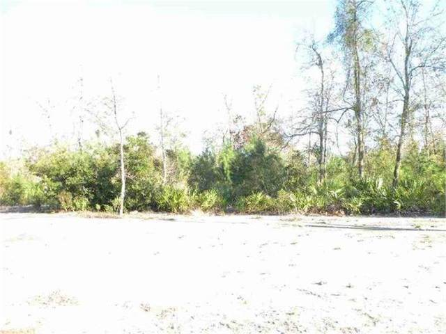 162 Barrington Oaks Drive, Brunswick, GA 31523 (MLS #1624565) :: Coastal Georgia Living