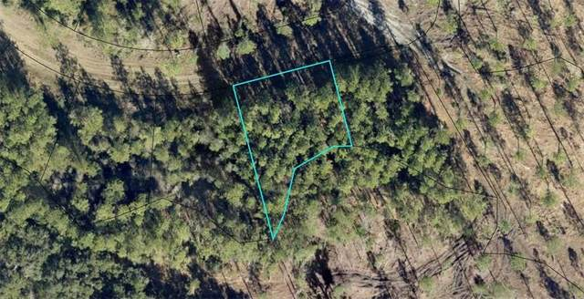Lot 689 Sand Dune Road, Waverly, GA 31565 (MLS #1624781) :: Coastal Georgia Living