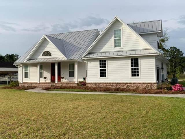 1139 Emanuel Church Road, Brunswick, GA 31523 (MLS #1625272) :: Coastal Georgia Living