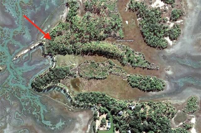 81 Barbour Island, Townsend, GA 31331 (MLS #1625440) :: Coastal Georgia Living