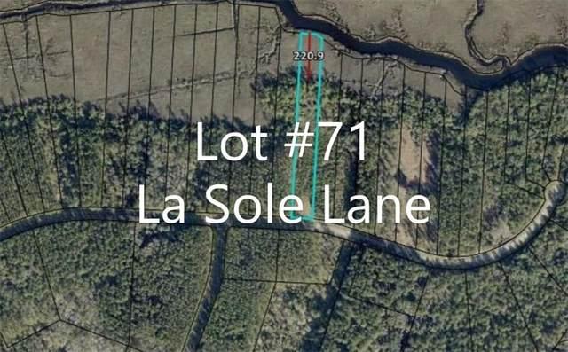 VLot71 La Sole Lane, Waverly, GA 31565 (MLS #1628297) :: Coastal Georgia Living