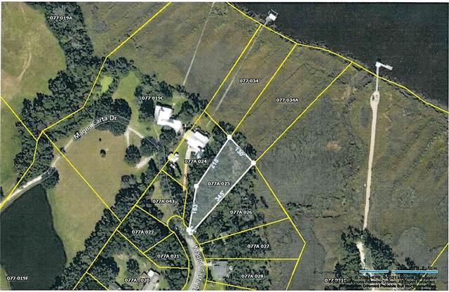 V/L 25 Magna Carta Drive, Woodbine, GA 31569 (MLS #1628304) :: Coastal Georgia Living