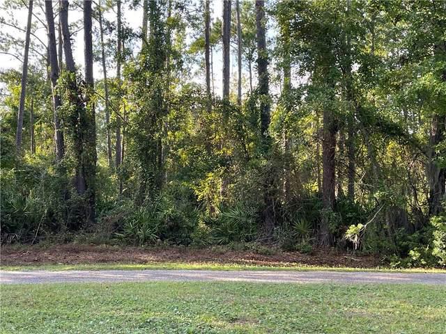 206 Palm Trace, Brunswick, GA 31525 (MLS #1629579) :: Coastal Georgia Living