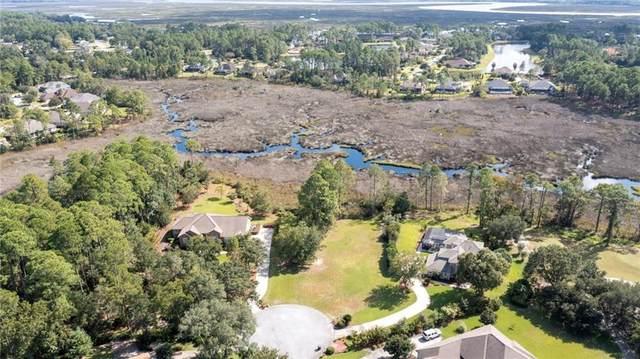 920 Larkspur Lane, St Marys, GA 31558 (MLS #1629684) :: Coastal Georgia Living