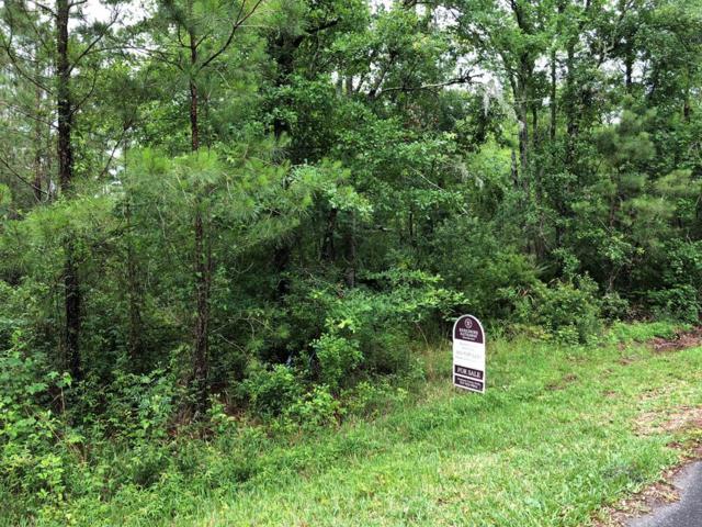 314 Stutts Road, Brunswick, GA 31523 (MLS #1586920) :: Coastal Georgia Living