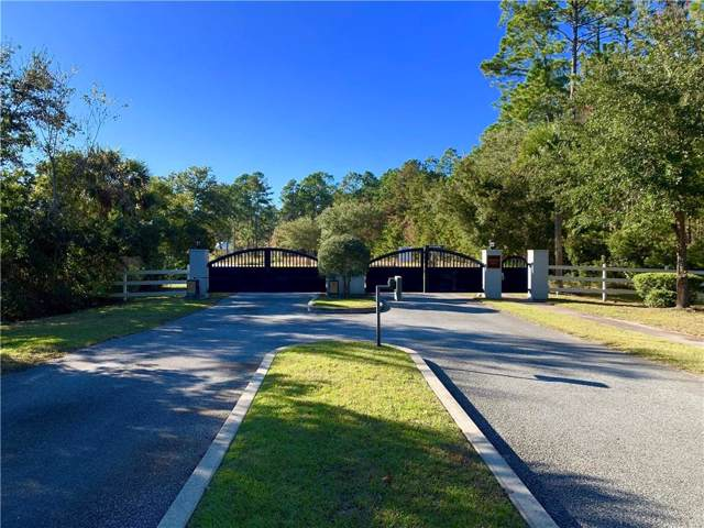 29 Snowy Egret Drive, Brunswick, GA 31523 (MLS #1600079) :: Coastal Georgia Living