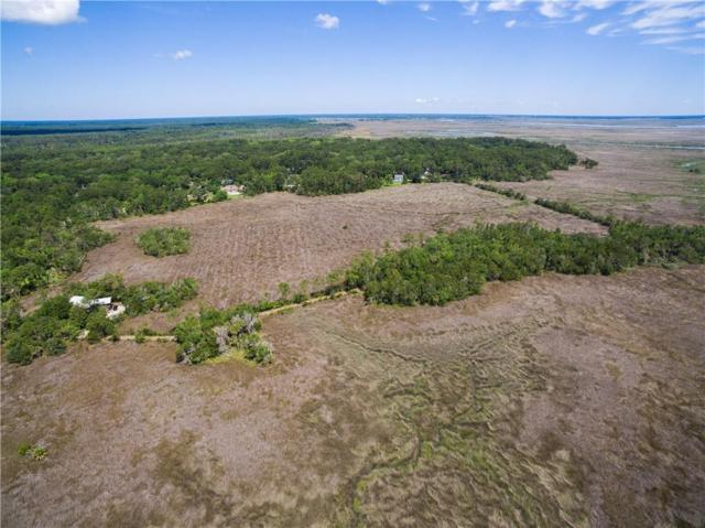 118 Palm Grove Island Drive, Brunswick, GA 31525 (MLS #1608061) :: Coastal Georgia Living