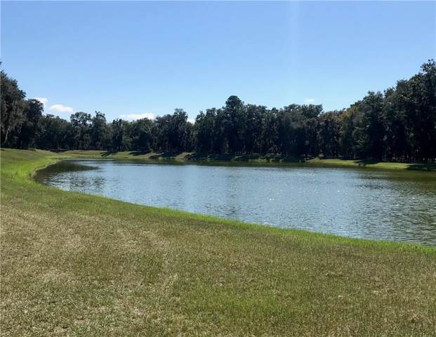 914 Hidden Lagoon Lane NE, Townsend, GA 31331 (MLS #1610062) :: Coastal Georgia Living