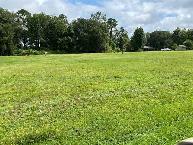 Lot 17 Plantation Point, Woodbine, GA 31569 (MLS #1628608) :: Coastal Georgia Living