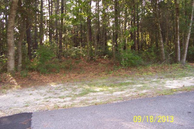 Lot 82 Eagle Neck, Townsend, GA 31331 (MLS #1566130) :: Coastal Georgia Living